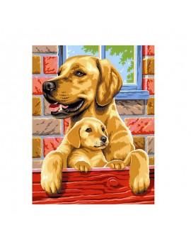 Рисуване по номера Кучета,...